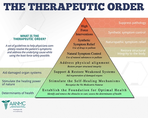 A naturopathic guide to integrative treatment and policy: A