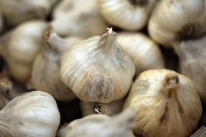 garlic-1648753_1920