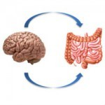 crop.gut-feelings-emerging-biology-of-gut-brain-communication-01.jpg.thumbnail.150x150.jpeg