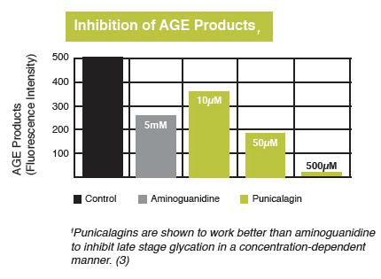 inhibition-of-AGE-products