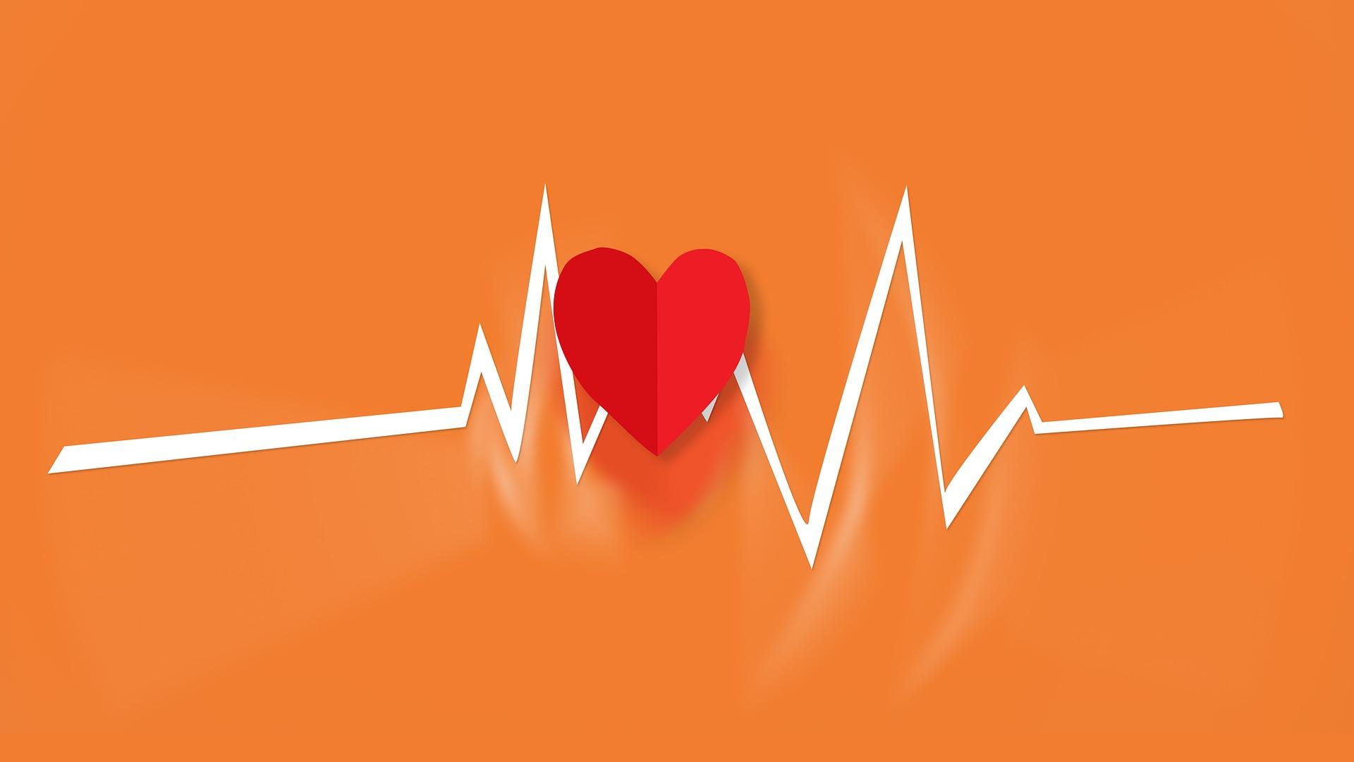 Harvard Medical School advocates for preventative medicine in recent article