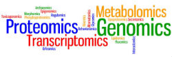 Omics-graphic-for-5.jpg