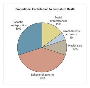 proportional contribution to premature death