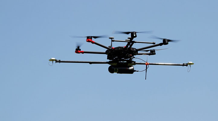 Using a UAV to Visualize and Characterize the Six Main Species of Forest Trees and Improve Weather Forecasting