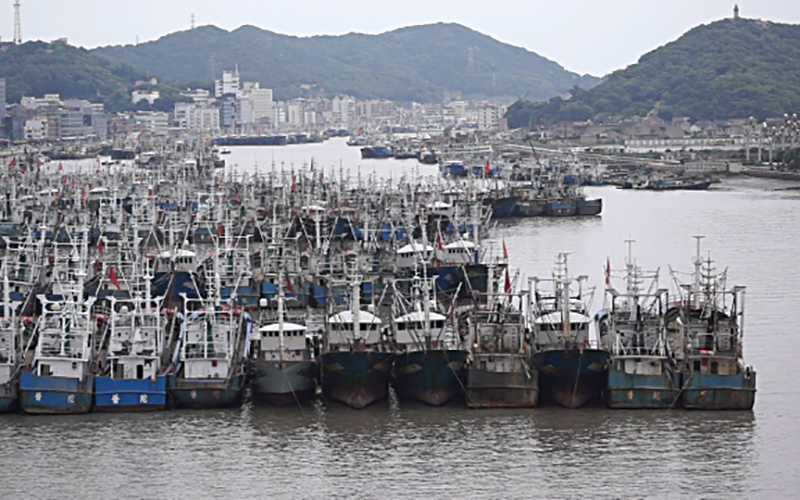 Ocean aquaculture, distant-water fleet haul keeping prices steady in China