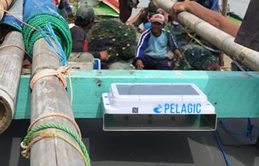 pelagic_400-NL.jpg